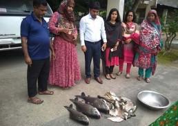 মাগুরা সরকারি পুকুরের মাছ অসহায়দের মাঝে বিলিয়ে দিলো জেলা প্রশাসন